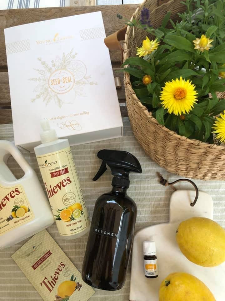 Life & Style blogger, Liz Joy, shares an introduction to Essentail Oils.  She shares insight into her wellness journey and how you can get there too!